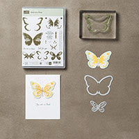 Watercolor Wings Photopolymer Bundle by Stampin' Up!