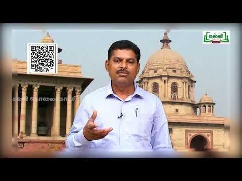 11th Political Science அரசு அலகு 2 Kalvi TV