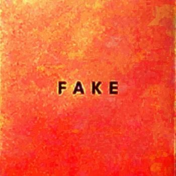 Bild des Albums Fake von DIE NERVEN