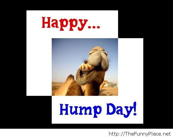 Message Hump Day Thefunnyplace