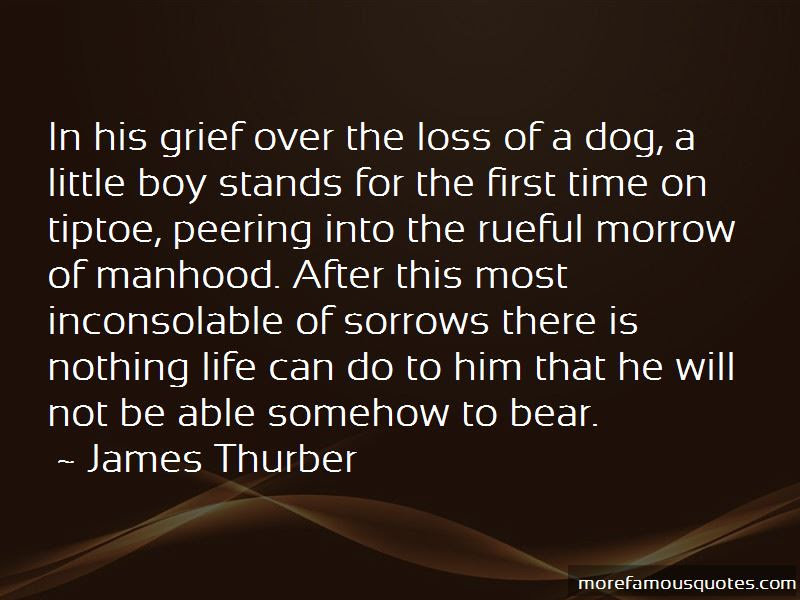 Quotes About Loss Of A Dog Top 14 Loss Of A Dog Quotes From Famous