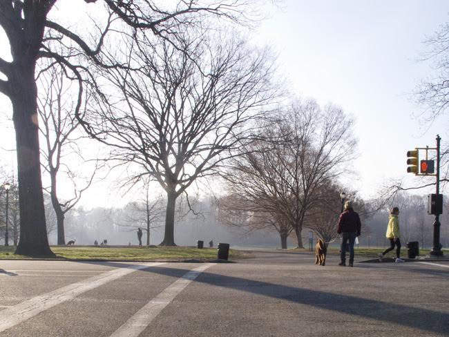 Prospect Park, Morning