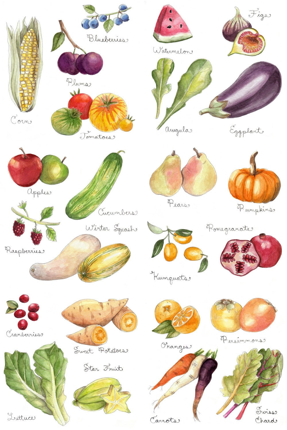Fruits and Vegetables Print 11x17