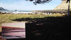Tolaga Bay Wharf + Postcard