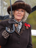 Camilla Parker Bowles Prince Charles married