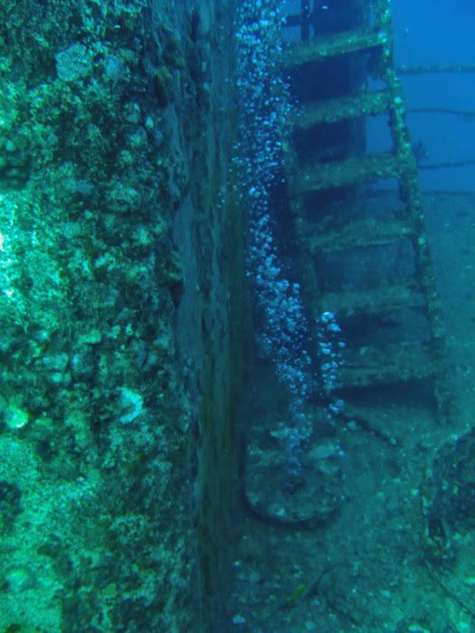 scuba diving oahu 031