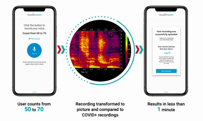 Приложение VocalisCheck диагностирует COVID-19 по голосу с точностью 81%