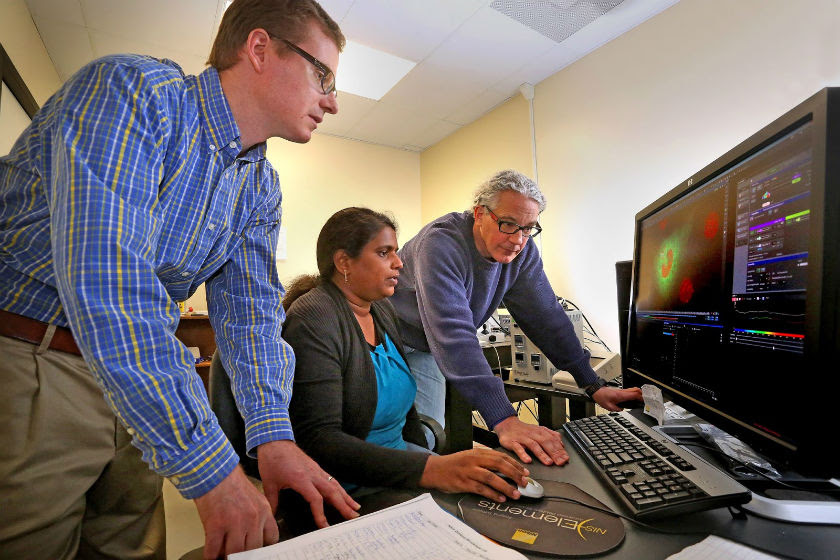University of South Alabama graduate student Naga Annamdevula (center), and her mentors Dr. Silas Leavesley (left) and Dr. Thomas Rich use the confocal laser microscope in the bioimaging facility at the USA College of Medicine.