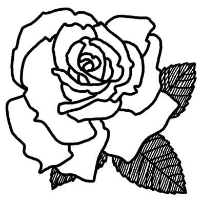 バラ6バラ薔薇2花無料白黒イラスト素材