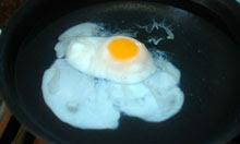 Delia Smith poached egg