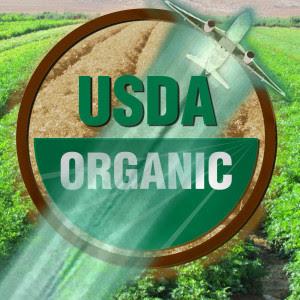 organic-chem