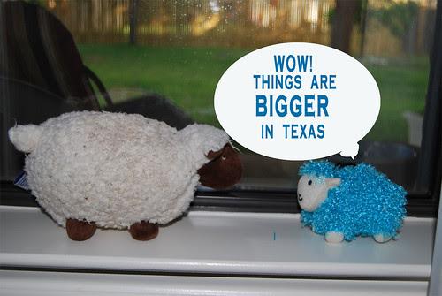 Bigger-in-Texas
