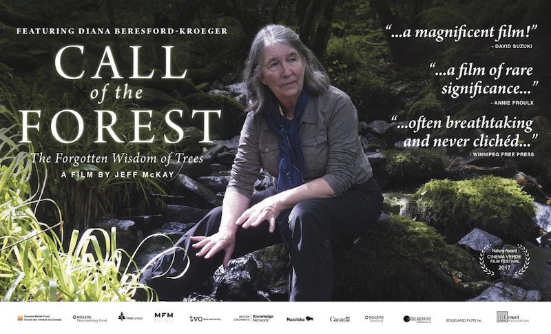 Image result for call of the forest film