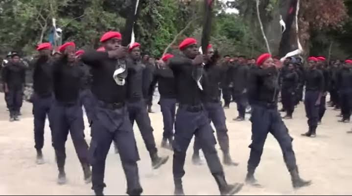 Joint Security Team Sacks IPOB Security Network From Imo Forest