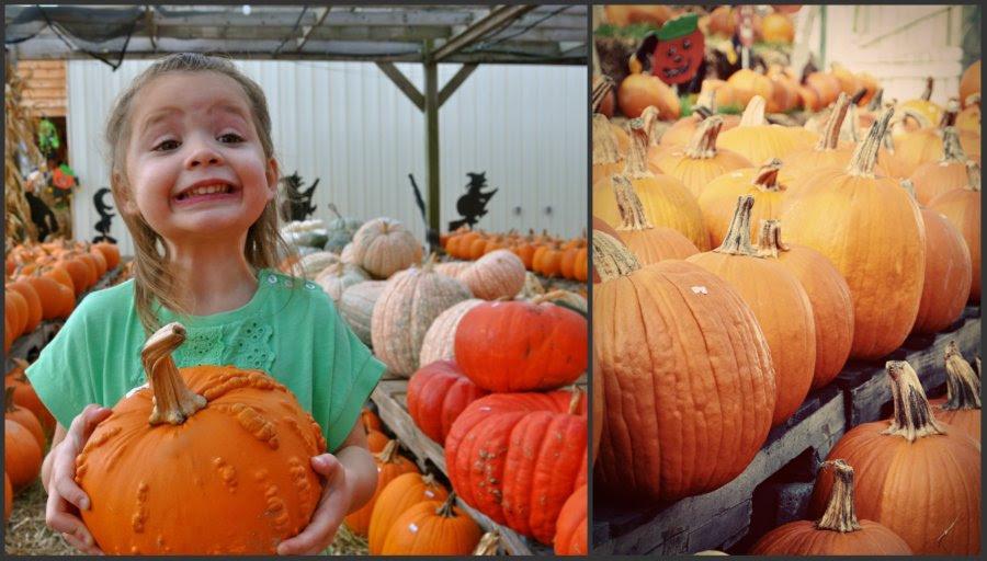 Bumpy the Pumpkin