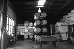Copious Winery - wine barrels
