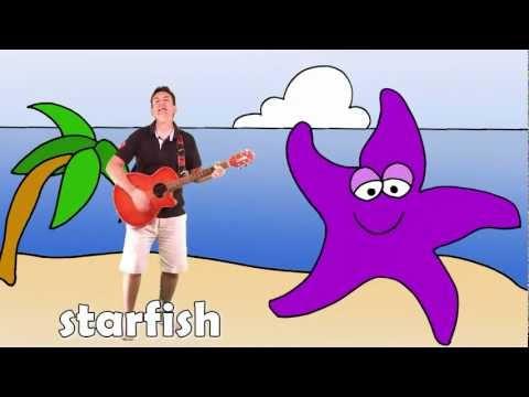 LESSON 10 - SEA & OCEAN Animals