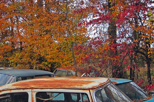 Rusted Splendor