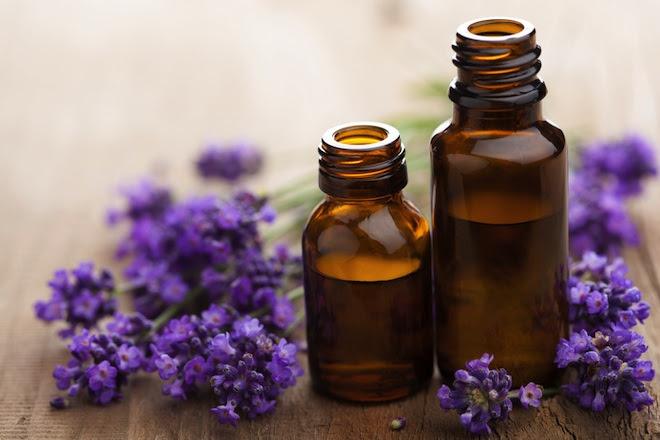 Minyak Lavender