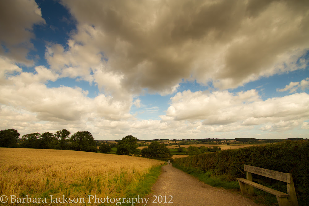 Clouds over late summer fields