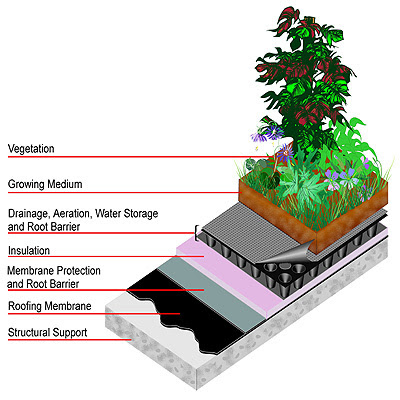 Elements of a Green Roof