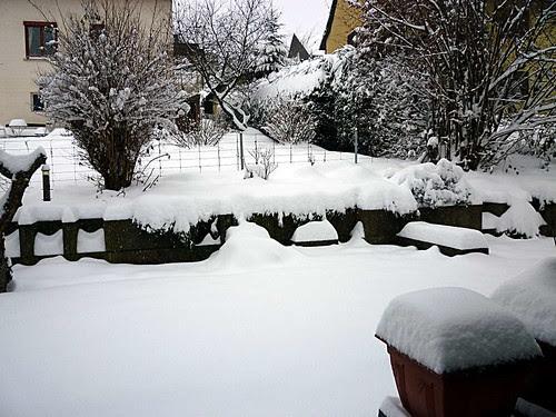 WeißeWeihnacht