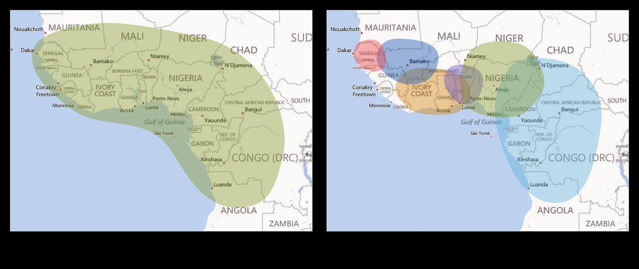 West African ethnicity