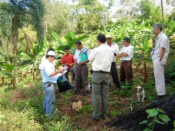 Con el mejor cacao del país, gobierno de Boyacá apuesta a sustituir cultivos de coca