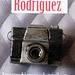 broche cámara de fotos 1