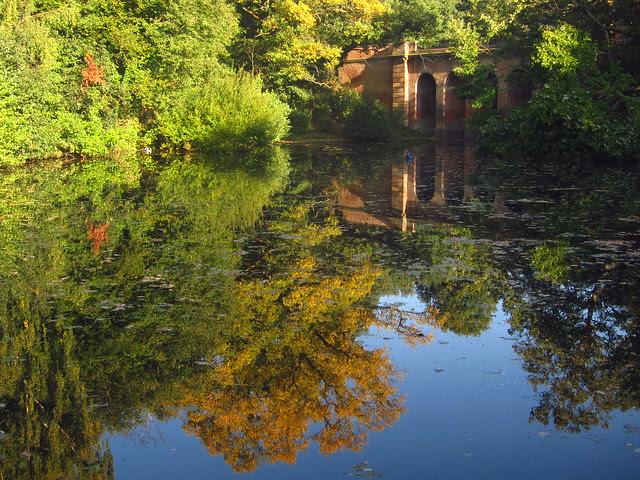 The Viaduct Pond