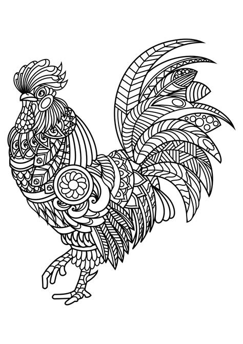 animal coloring pages  coloring birds  feathers