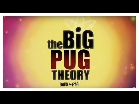 La teoría de Pug grande