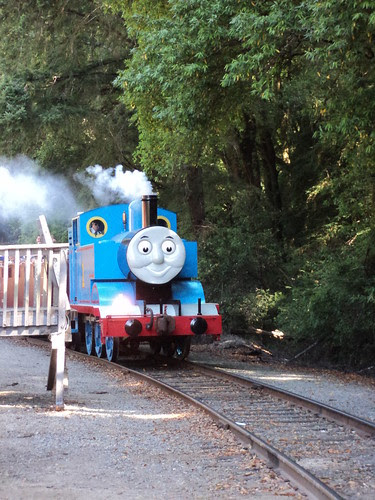 Thomas chugs into the station