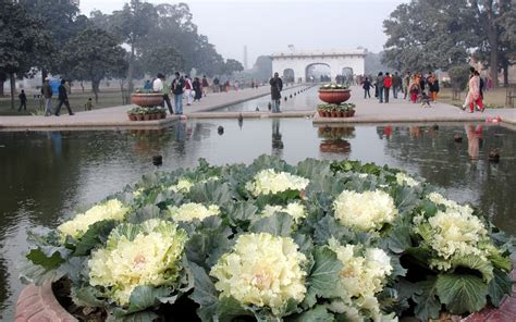 shalimar gardens wallpapers shalimar gardens stock