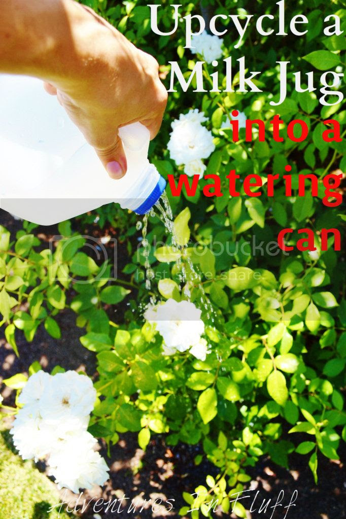 Upcycle a milk jug into a watering can