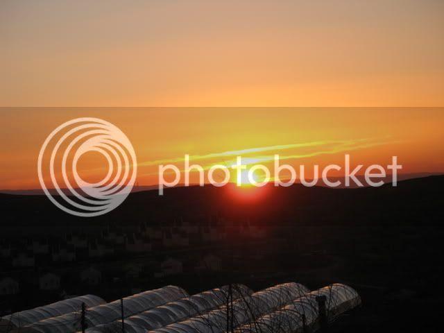 sunrise in Shiloh