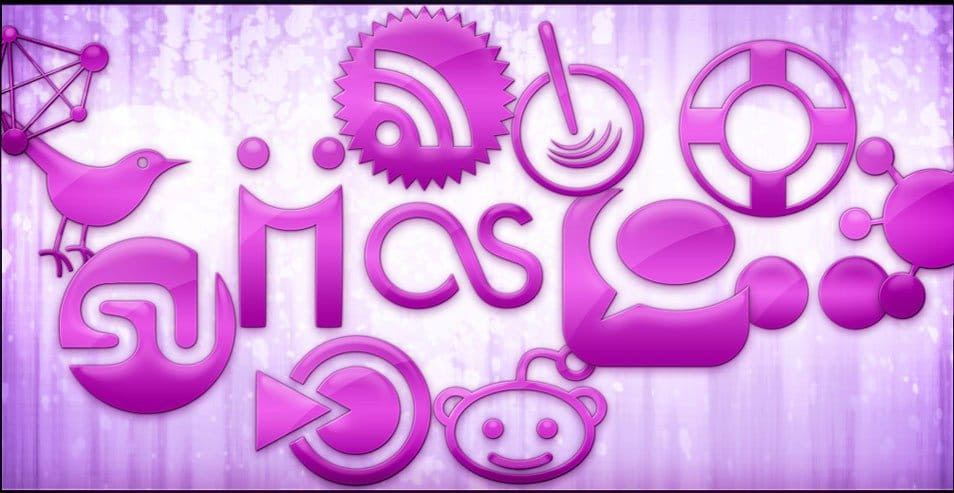 Pink Jelly Social Networking Icons