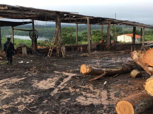 Operação Maravalha em Imperatriz (Foto: Divulgação/ Polícia Federal)