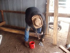 Building a feeder