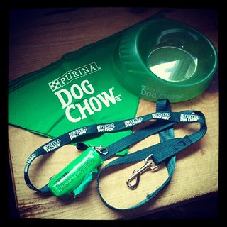 Purina #dog Chow Family Points Program goodies  #dogstagram #petstagram #swag #instadog