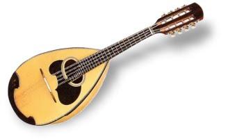 楽器事典 マンドリンの演奏