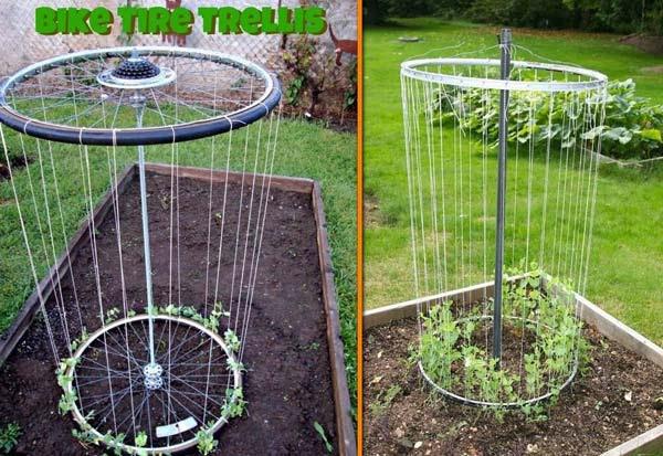AD-Gardening-Tips-11