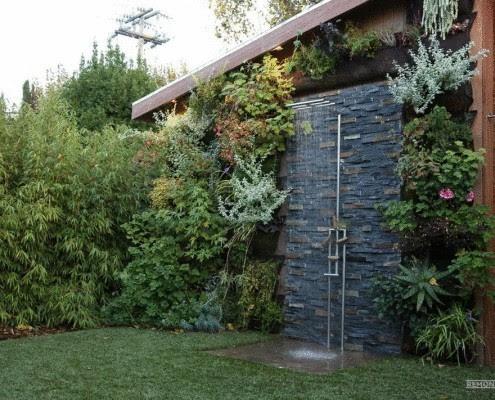 Летний душ в сочетании с вертикальным озеленением