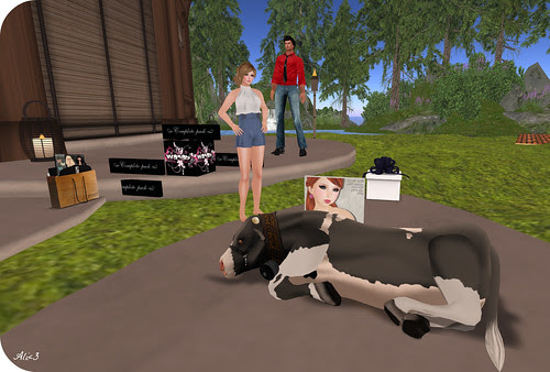 Day 73 - Hi Cow