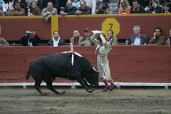 Fernando Roca Rey pone banderillas cortas al quiebro