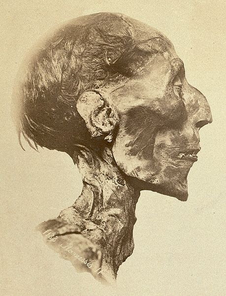 File:Ramses II - The mummy.jpg