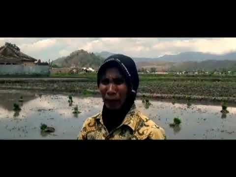 Potret Kota Bima, Petani Makin Terpojok