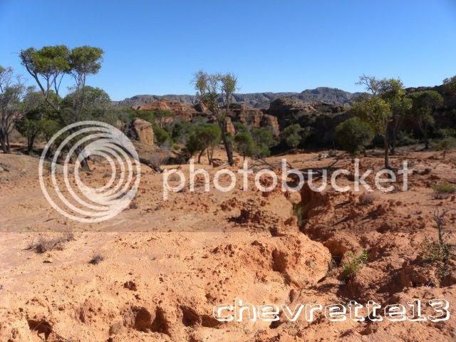 http://i1252.photobucket.com/albums/hh578/chevrette13/Madagascar/DSCN0507640x480_zps22b11816.jpg