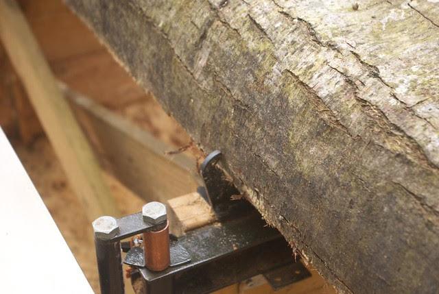 DSC_3919 Logosol sawmill