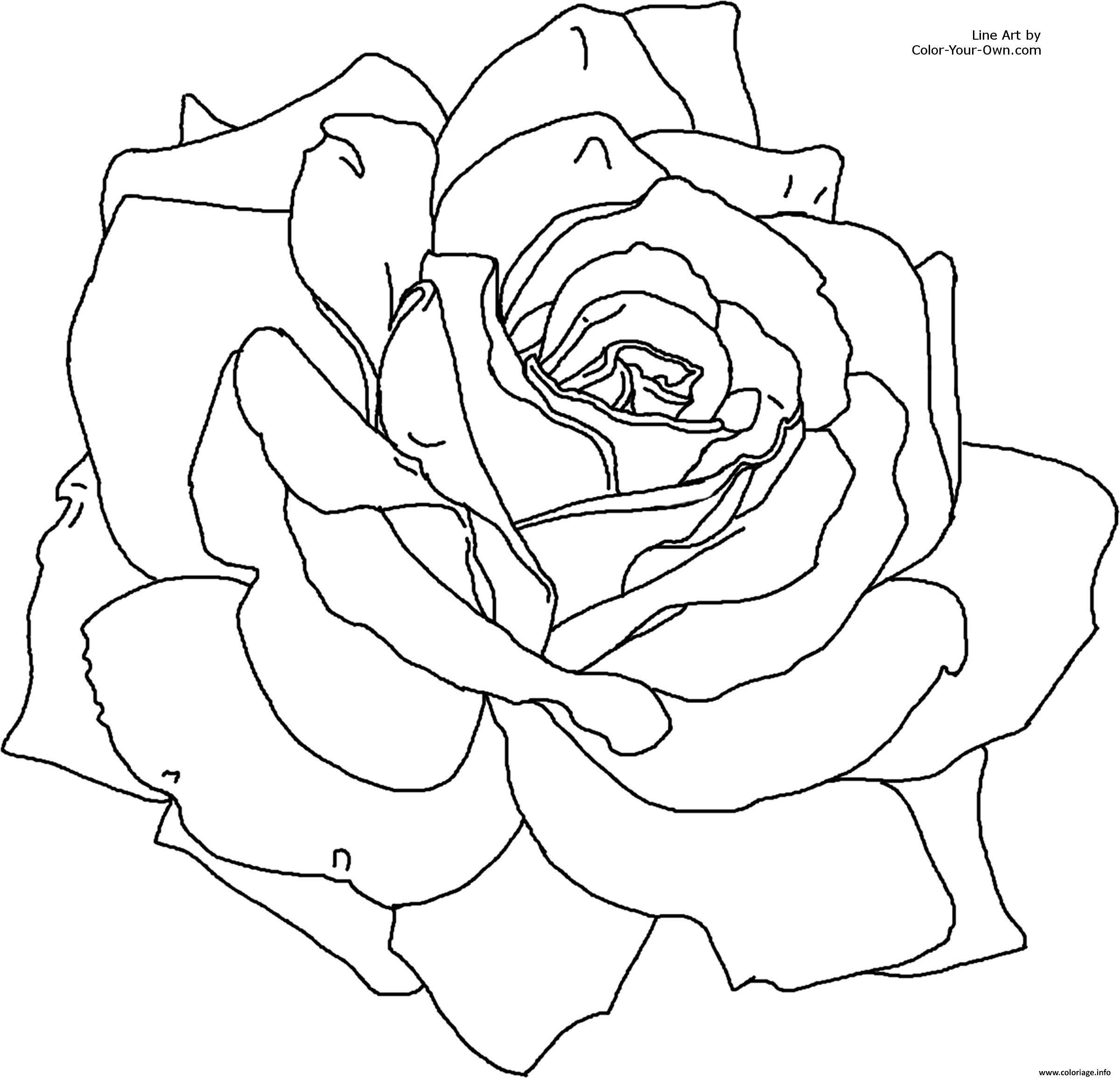 Coloriage Roses 6 Dessin  Imprimer